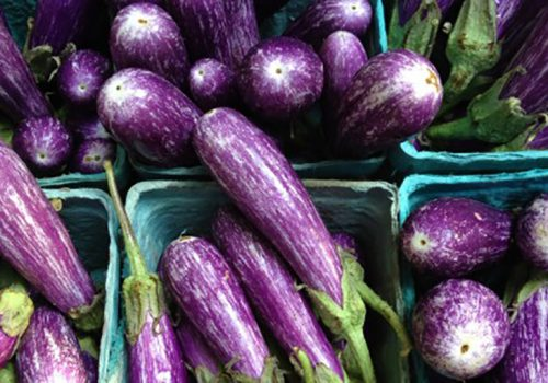 Locally grown eggplants