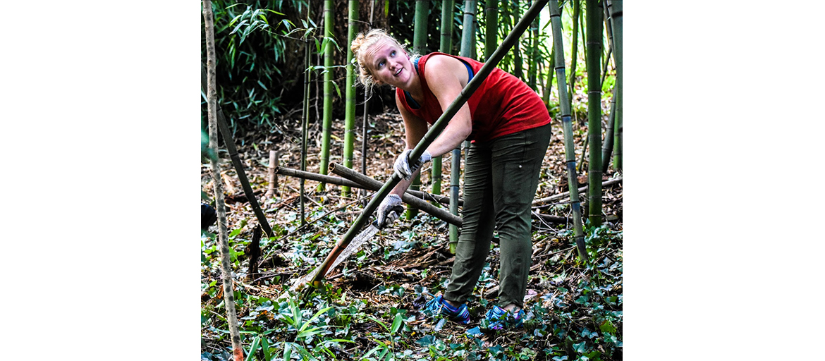 a woman clears bamboo
