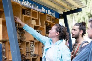 people examining UNC Asheville's Bee Hotel