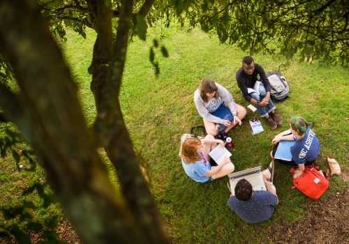 Aerial shot of 5 students sitting under a tree on UNC Asheville's Quad