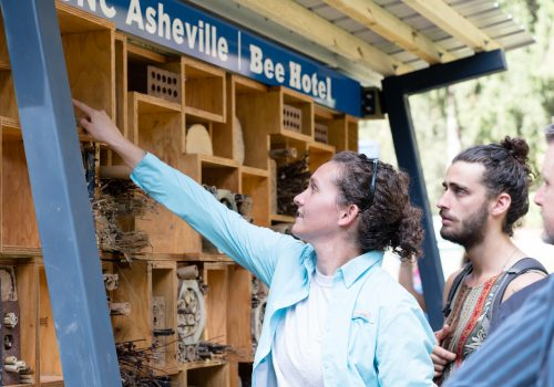 Staff member pointing at the Bee Hotel
