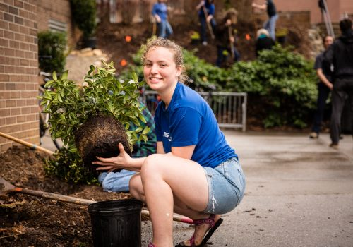 Student holding a plant over mulch