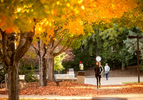 Students walking on campus with the maple leaves changing colors